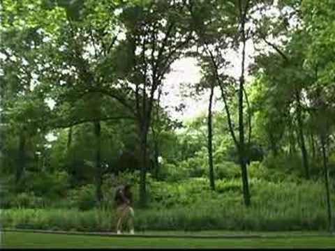 Voorstelling van Central Park