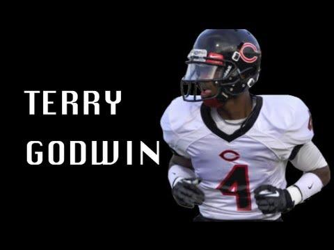 Terry-Godwin