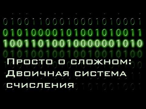 Atsiliepimai apie binaro darbą
