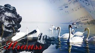El Danubio Azul - Strauss (1 HORA)
