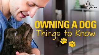 OWNING A DOG | Things to Know Before Getting a Puppy! | Doctor Mike - Video Youtube