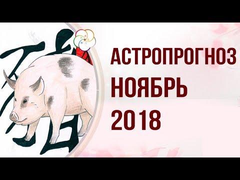 АСТРОПРОГНОЗ НА НОЯБРЬ 2018 ГОДА : Прогноз на Месяц Водяной Свиньи 2018 года!