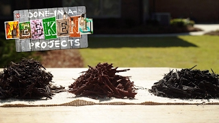 So Mulch to Consider: How to Select the Ideal Mulch for Your Planting Beds