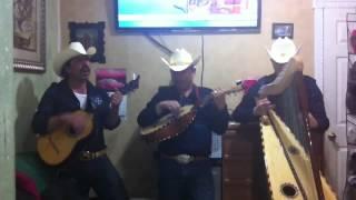 Conjunto De Arpa Grande (Dimelo De Frente) Jilgueros Michoacános 2012