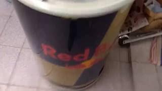 Red Bull Kuehlschrank Dose : Ist red bull cola wirklich natürlich ein faktencheck