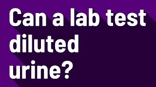 Can a lab test diluted urine?