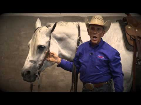 , title : 'How to Bridle a Horse: Western