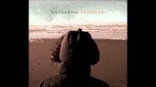 Siddhartha - Camaleon