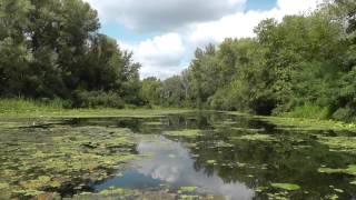 Рыбалка в парке дружбы народов киев