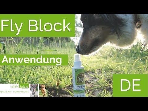 Fly Block Anwendung Hund - Natürlicher Zeckenschutz