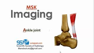 Ankle Joint Imaging (I) - Prof. Dr. Mamdouh Mahfouz (2018)