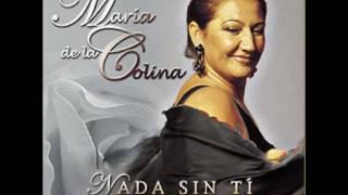 Voy A Olvidarme De Ti - María De La Colina