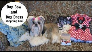 Dog Bow And Dog Dress Shopping Haul