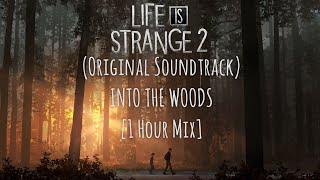 Life is Strange  2 - Into the Woods (1 Hour Mix)