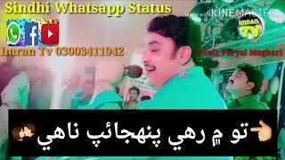 Sindhi Whatsapp Status Video - Most Popular Videos