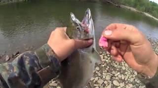 Рыбалка в татарском проливе ванино