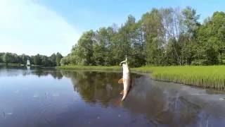 Озеро бездон калужская область рыбалка