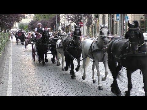 Sfilata carrozze - San Savino 2017