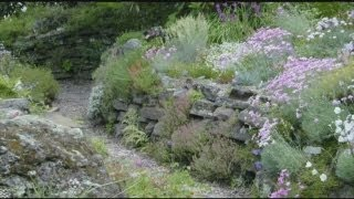 Mass Appeal See some beautiful gardens across Massachusetts!