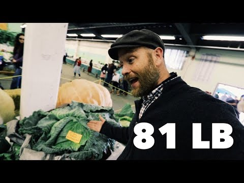 , title : 'the 81 Pound Alaskan CABBAGE