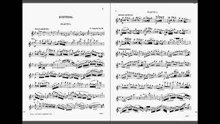Duettino Hongrois op.36 (Franz Doppler)
