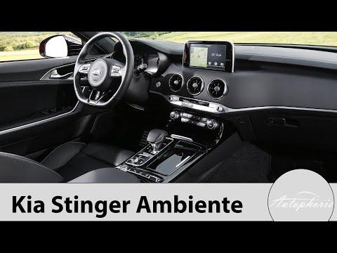 Ambiente-Licht im Kia Stinger Modelljahr 2019 (alle Versionen) [4K] - Autophorie