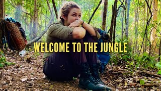 Welcome To The Jungle by teamBMC