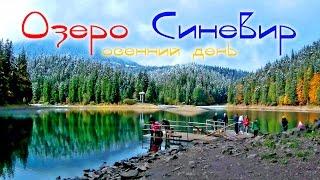 СИНЕВИР озеро на Закарпатье 🇺🇦 Природа України і краса Закарпаття
