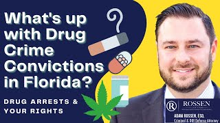 What happens if I'm convicted of a drug crime in Florida?