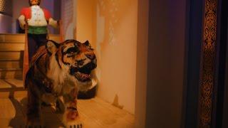 Behind the scenes bij de Efteling-grap met tijger in Fata Morgana - Efteling