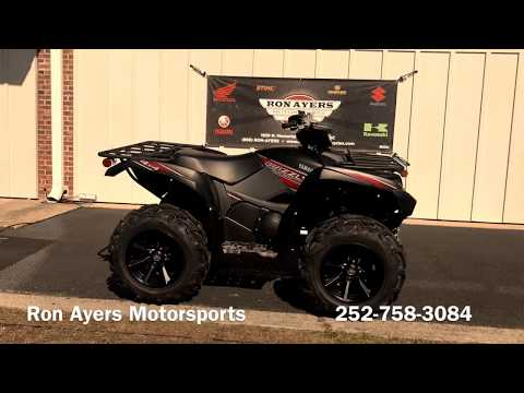 2019 Yamaha Grizzly EPS SE in Greenville, North Carolina - Video 1