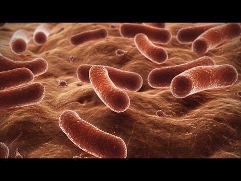 Le microorganisme végétal négligé entre les doigts des pieds