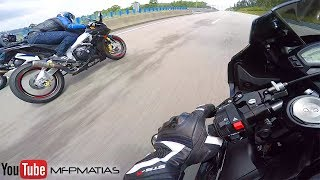 GSXR Vs CBR 1000RR Vs RSV4 - RACE | TOP SPEED | WHEELIES