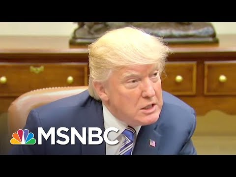 Language Expert: Donald Trump's Way Of Speaking Is 'Oddly Adolescent' | The 11th Hour | MSNBC