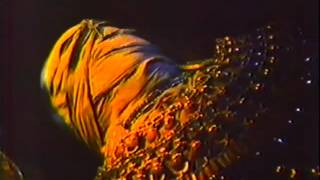 The Awakening (1980) Video