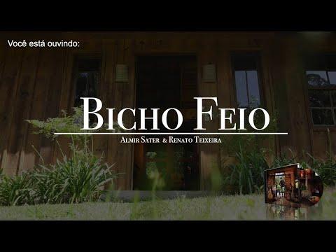 Música Bicho Feio