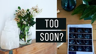 When to try again after miscarriage?