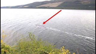 Someone Has Just Captured The Clearest Images Of The Loch Ness Monster Ever Taken