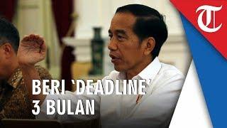 Cari Penyerang Novel Baswedan, Presiden Beri 'Deadline' 3 Bulan ke Kapolri