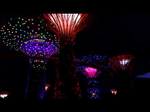 Сингапур 2017 вечер, gardens by the bay, night skyway