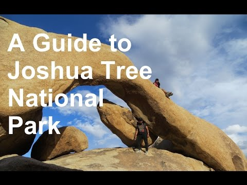Video Joshua Tree National Park