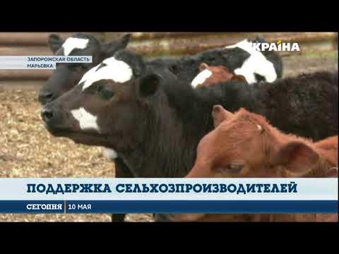 В Радикальной партии озвучили детали своей программы поддержки сельхозпроизводителей