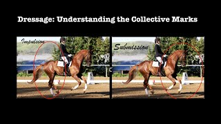 Dressage: Understanding the Collective Marks
