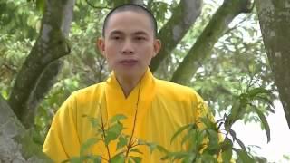 Hát Chèo_TINH TA NGAY AY_   Thich Thanh Hai   Mp4