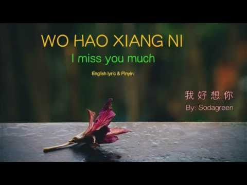 Wo Hao Xiang Ni Lyric (I Miss You Much) - Pinyin & English - Learn Chinese By Songs
