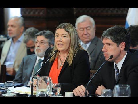 Ganancias: Bertone y otros 8 gobernadores le piden al Gobierno que arme un proyecto consensuado