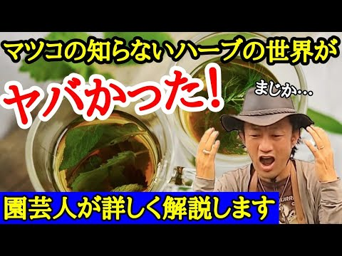 , title : '【愛さんがヤバい】園芸専門店長が「マツコの知らないハーブの世界」を徹底解説。とっておきの育て方も教えます!  japan garden
