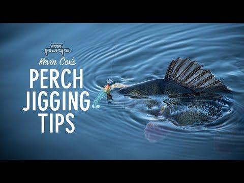 Tip til aborrefiskeri med jig