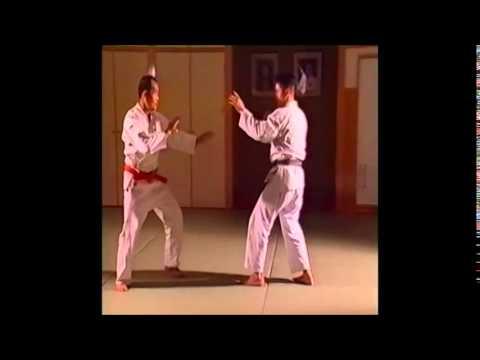 Before Brazilian Jujutsu? - Fusen Ryu
