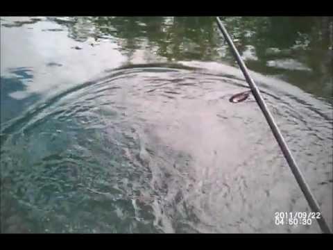 Crappie fishing Bob's pond